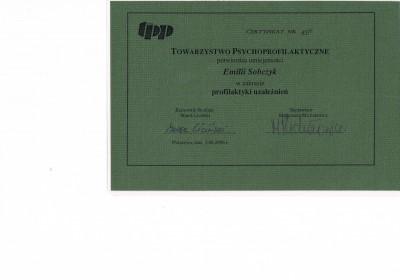 certyfikat-003 (2)