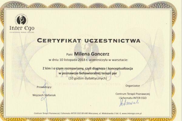 certyfikat-5 (2)
