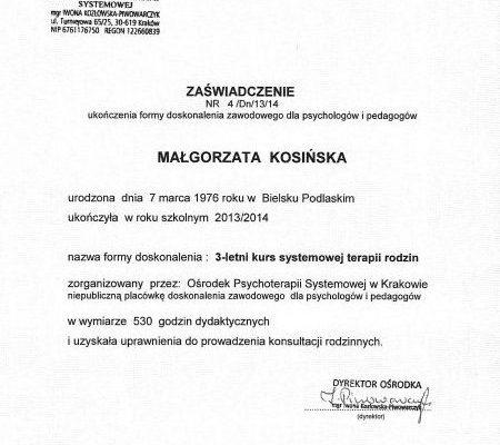 certyfikaty-6 (6)